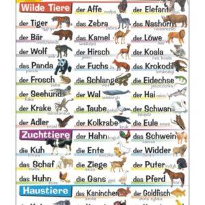 die Tiere - Tablica edukacyjna 70x100 cm